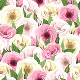 Seamless pattern with pink and white lisianthus flowers. Vector illustration. Stock Images