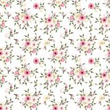 Seamless pattern with pink and white lisianthus flowers. Vector illustration. Royalty Free Stock Photo
