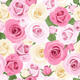 vector seamless pattern with pink and white roses. Royalty Free Stock Image