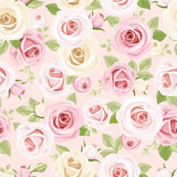 Seamless pattern with pink and white roses on pink. Vector illustration. Stock Image