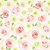 Seamless pattern with pink and white roses. Vector illustration. Royalty Free Stock Photo