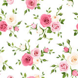 Seamless pattern with pink and white roses. Vector illustration. Stock Photos