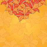 Seamless Pattern with Pink Yellow Flowers Royalty Free Stock Images