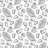 Seamless pattern with pistachio nuts Royalty Free Stock Image