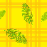 Seamless  pattern in plaid with palm leaves Stock Images