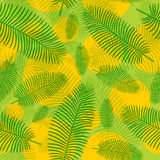 Seamless  pattern in plaid with palm leaves Royalty Free Stock Images