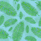 Seamless  pattern in plaid with palm leaves Stock Photos