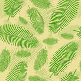 Seamless  pattern in plaid with palm leaves Royalty Free Stock Image