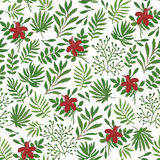Seamless pattern with plants Stock Photography