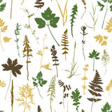 Seamless pattern with plants and leaves silhouettes Royalty Free Stock Photos