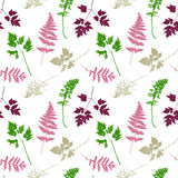 Seamless pattern with plants and leaves silhouettes Royalty Free Stock Images