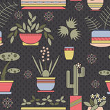 Seamless pattern with plants in pots. Royalty Free Stock Image