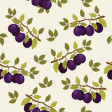Seamless pattern with plum branches Royalty Free Stock Photos
