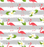 Seamless Pattern with Plumeria Flowers and Pink Flamingo Birds Stock Photos
