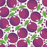 Seamless pattern with plums. Design for paper, textile or wallpaper. Berries on white background. Vector illustration Stock Photos