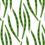 Seamless pattern of pods of peas. Vector illustration. Food wallpapers from vegetable Stock Photography