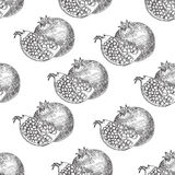 Seamless pattern Pomegranate fruit, berry. Organic nutrition healthy food. Engraved hand drawn vintage retro vector. Stock Image