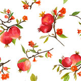 Seamless Pattern. Pomegranate Tropical Background Royalty Free Stock Photo