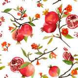 Seamless Pattern. Pomegranate Tropical Background Royalty Free Stock Image