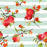 Seamless Pattern. Pomegranate Tropical Background. Floral Pattern. Seamless Pattern Pomegranate Tropical Background. Floral Pattern with Flowers, Leaves, Fruits Royalty Free Stock Photos