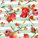 Seamless Pattern. Pomegranate Tropical Background. Floral Pattern Stock Image