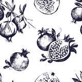 Seamless pattern with pomegranates. Fruit on white background. Royalty Free Stock Photography