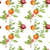 Seamless pattern with pomegranates and oranges Royalty Free Stock Photography