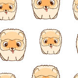 Seamless pattern with pomeranian puppies. Colorful vector illustration Royalty Free Stock Photography