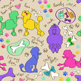 Seamless pattern of poodle dogs Stock Photography