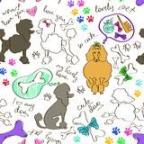 Seamless pattern of poodle dogs Royalty Free Stock Photo