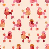 Seamless pattern with poodles. Vector Stock Image