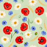Seamless pattern with poppies, daisies and cornflowers. Vector illustration. Vector seamless pattern with red poppies, white daisies, blue cornflowers and ears Royalty Free Stock Image