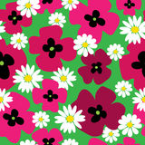 Seamless pattern with poppies and daisies on a green background. Seamless pattern with a poppies and daisies on a green background Stock Images