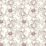 Seamless pattern with poppies. Floral background Royalty Free Stock Photography
