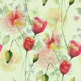 Seamless pattern with Poppies and Roses flowers Royalty Free Stock Photos