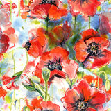 Seamless pattern with poppies Royalty Free Stock Images