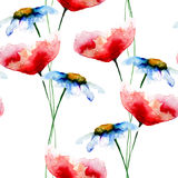 Seamless pattern with Poppy and Chamomile flowers Stock Images