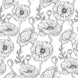 Seamless pattern with poppy flowers. Floral background. Black and white illustration Royalty Free Stock Images
