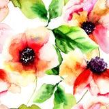 Seamless pattern with Poppy flowers Stock Photos