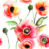 Seamless pattern with Poppy flowers Stock Image