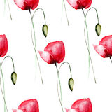 Seamless pattern with Poppy flowers Stock Photography