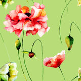 Seamless pattern with Poppy flowers Stock Photo