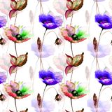 Seamless pattern with Poppy and Gerber flowers. Watercolor illustration Stock Photo