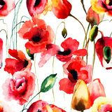 Seamless pattern with Poppy and Tulips flowers. Watercolor illustration Stock Photos