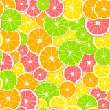 Seamless pattern. Print of slices of green lime, yellow lemon, pink grapefruit and orange. Citrus fruit background. Seamless pattern. Print of slices of green royalty free illustration
