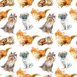 Seamless pattern of a pug dog,Yorkshire Terrier and ginger kitten. Royalty Free Stock Photography