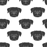 Seamless Pattern With Pug Puppy Hand Drawn Vector Illustration Of Dog Head On White