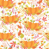 Seamless pattern with pumpkin and herbs Stock Image