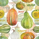 Seamless pattern with pumpkin, squash, marrow set. Watercolor hand drawn illustration Royalty Free Stock Photo