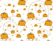 Seamless pattern - Pumpkins Stock Image